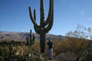 tyson_cactus