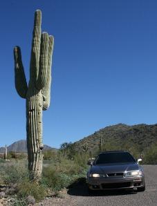 acura_legend_saguaro_cactus