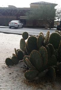 cactus_acura_ilx