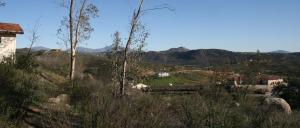ramona_view