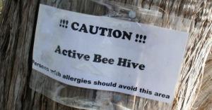 Tonto_Beehive