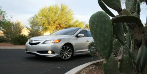 ilx_driver_front_cactus