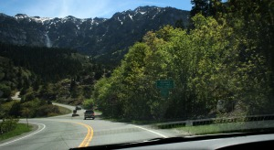 entering_ouray