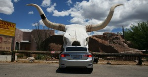 longhorn_grill_acura_ilx_rear