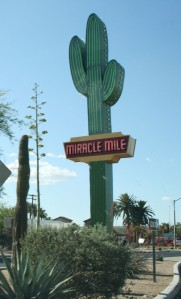 miracle_mile_cactus