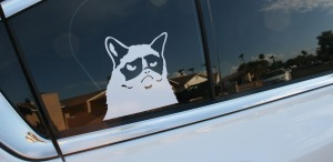 grumpy_cat_on_acura_tl