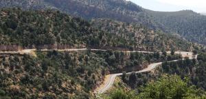 coronado_road