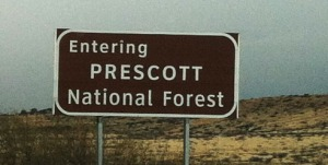 prescott_national_forest