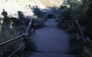 salt_river_rest_area_steps