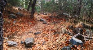 madera_hike