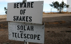 snake_signs