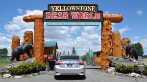 bear_world_entrance