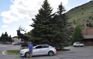 tyson_elk_statue