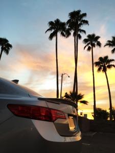 ilx_sunset
