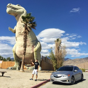 mr_rex_cabazon