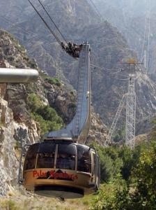 tram_car