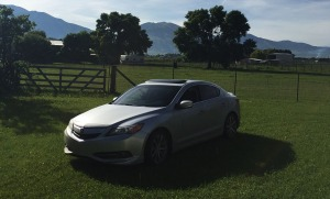 ilx_gma_backyard