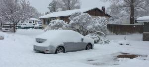 ilx_snow